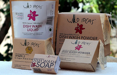 Dish Wash Solutions