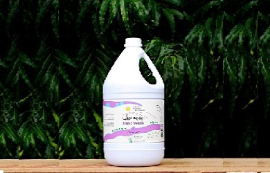 Hand wash Liquid – Bulk